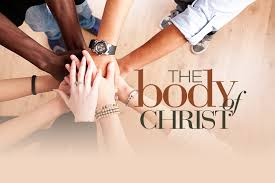 the church of God is the Body of christ